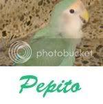 Listado de nombres Pepito