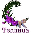 """Выпуск работ Факультета: """"Цветочный чай"""" 385b5a6924f8a0d2428ac4a597e8bbe6"""