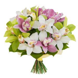 Поздравляем с Днем Рождения Юлию (julifer) 33372af2be7a1aa41b9f3c8efe0d1800