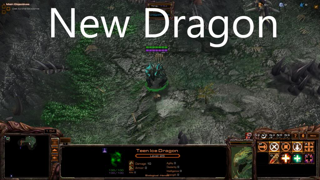 Update 2.0 Status Update NewDragon