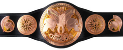 WWE Tag Team Champion