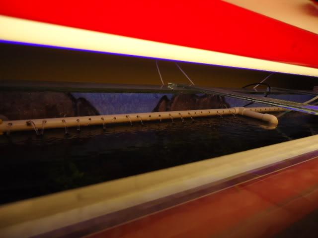 Flautilla o Flauta (Tubo de PVC agua caliente) adaptado al filtro sumergible DSC08842