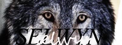 Selwyn - A Twin In Need SelwynEyes