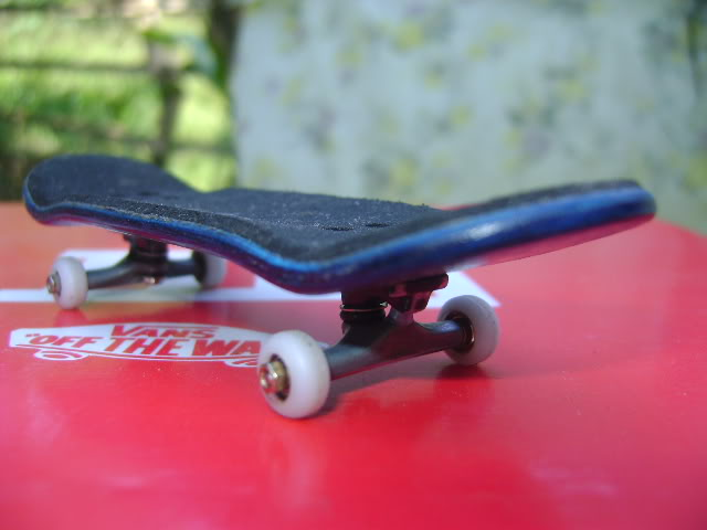 your fingerboard set-up DSC00002