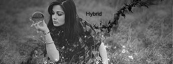 +Hybrid Graphics SigMystified