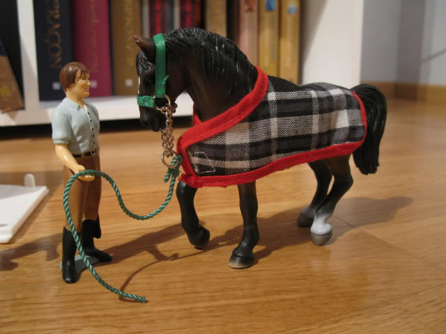 Siobhan's Schleich additions! IMG_3108