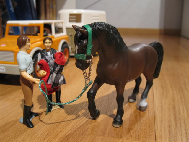 Siobhan's Schleich additions! IMG_3111