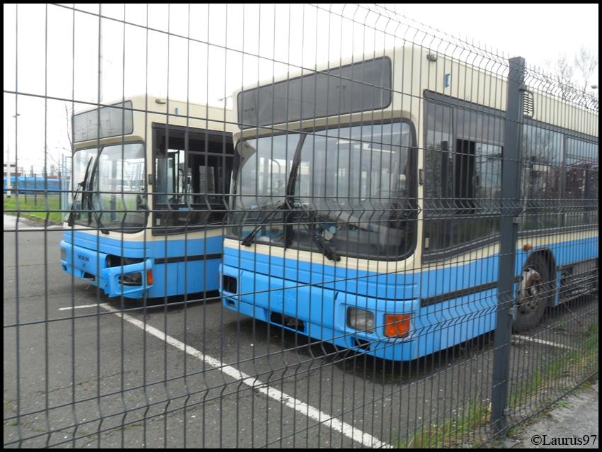 ZET Autobusi SAM_1251_zps17ca33ba