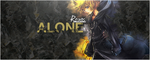 Use At your own Risk Roxas-Alone3