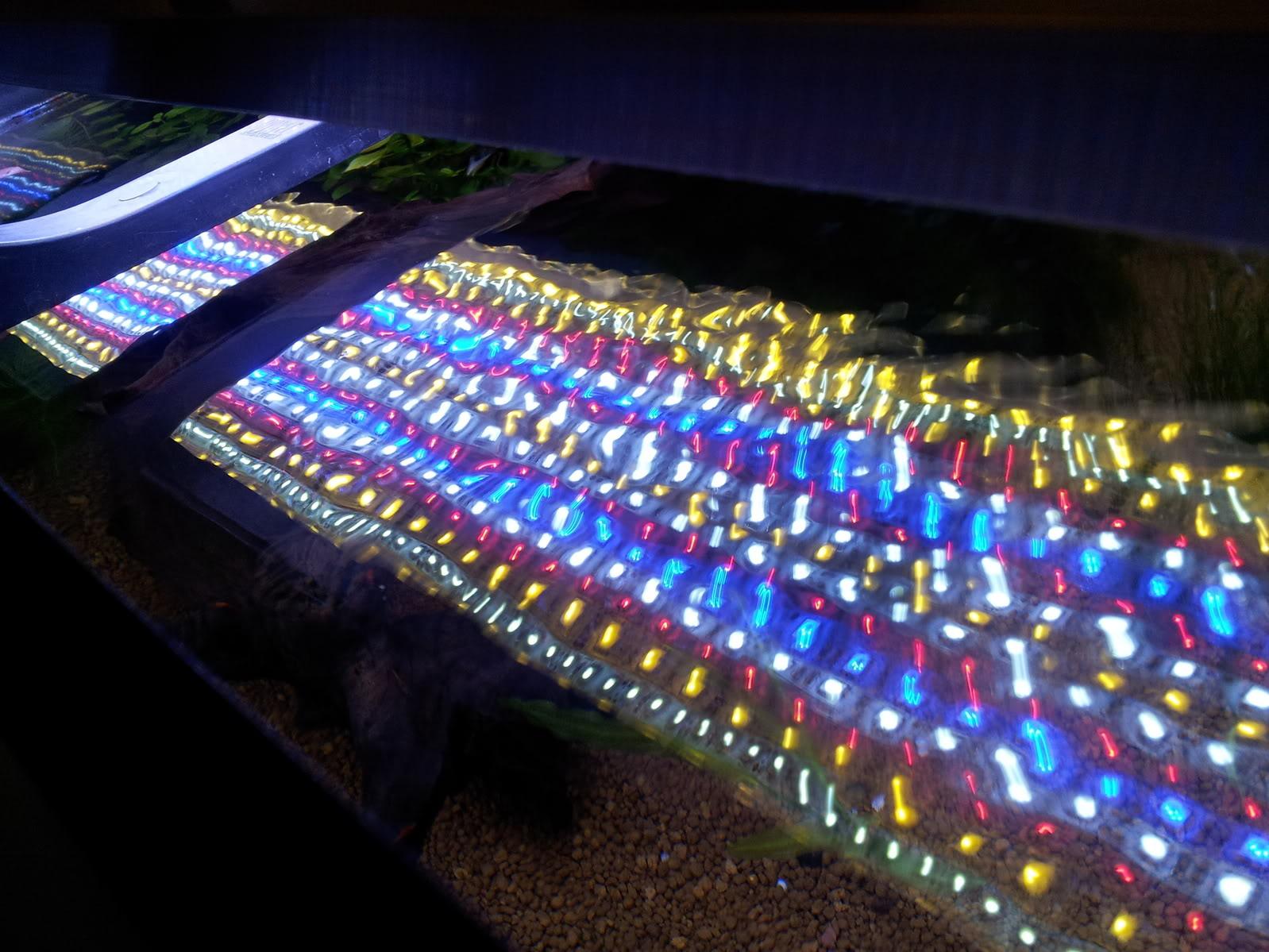 Fabrication galerie LED pour Juwel rio 125 (80cmx20cmx1.8cm) 20120715_205805