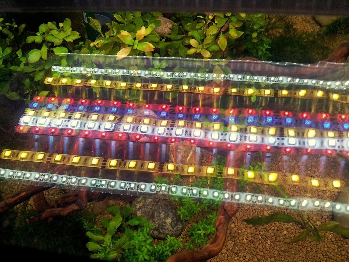 Fabrication galerie LED pour Juwel rio 125 (80cmx20cmx1.8cm) 20120723_221937