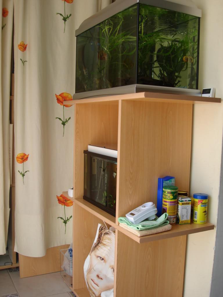 fabrication d'un meuble pour 2 aquariums DSC08839