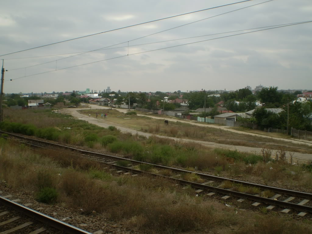 909 : Rosiori Nord - Alexandria - Zimnicea - Pagina 6 P1010393
