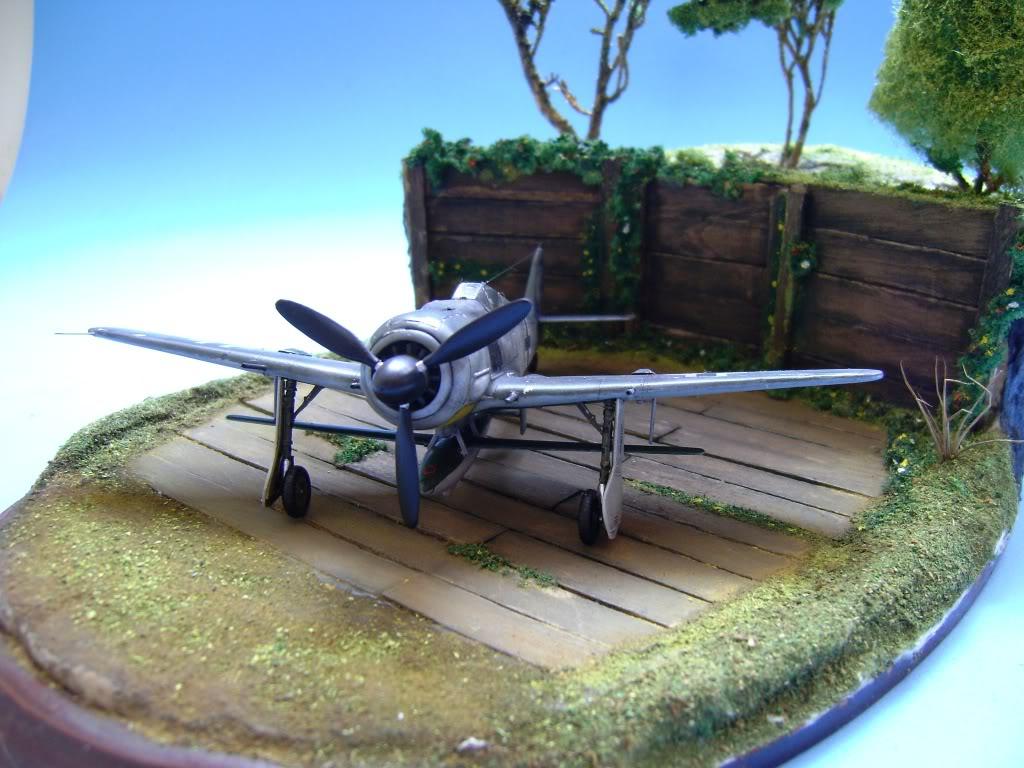 """FW-190 A8 & Bv 246 """"Hagelkorn"""" DSC03407"""