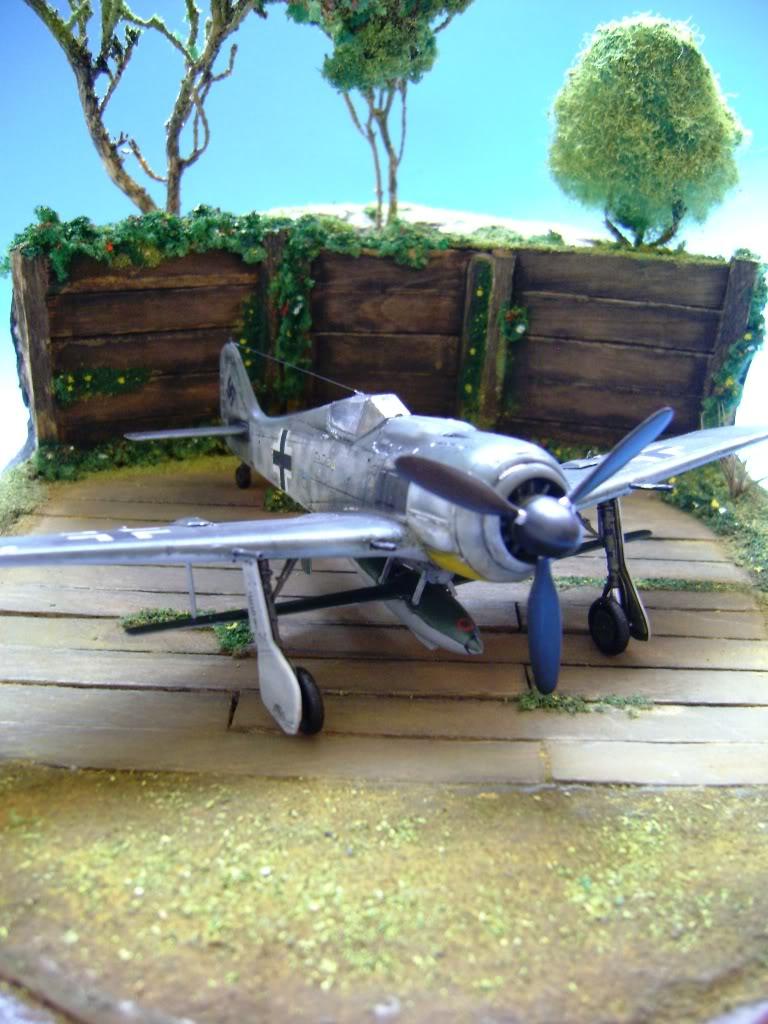 """FW-190 A8 & Bv 246 """"Hagelkorn"""" DSC03408"""