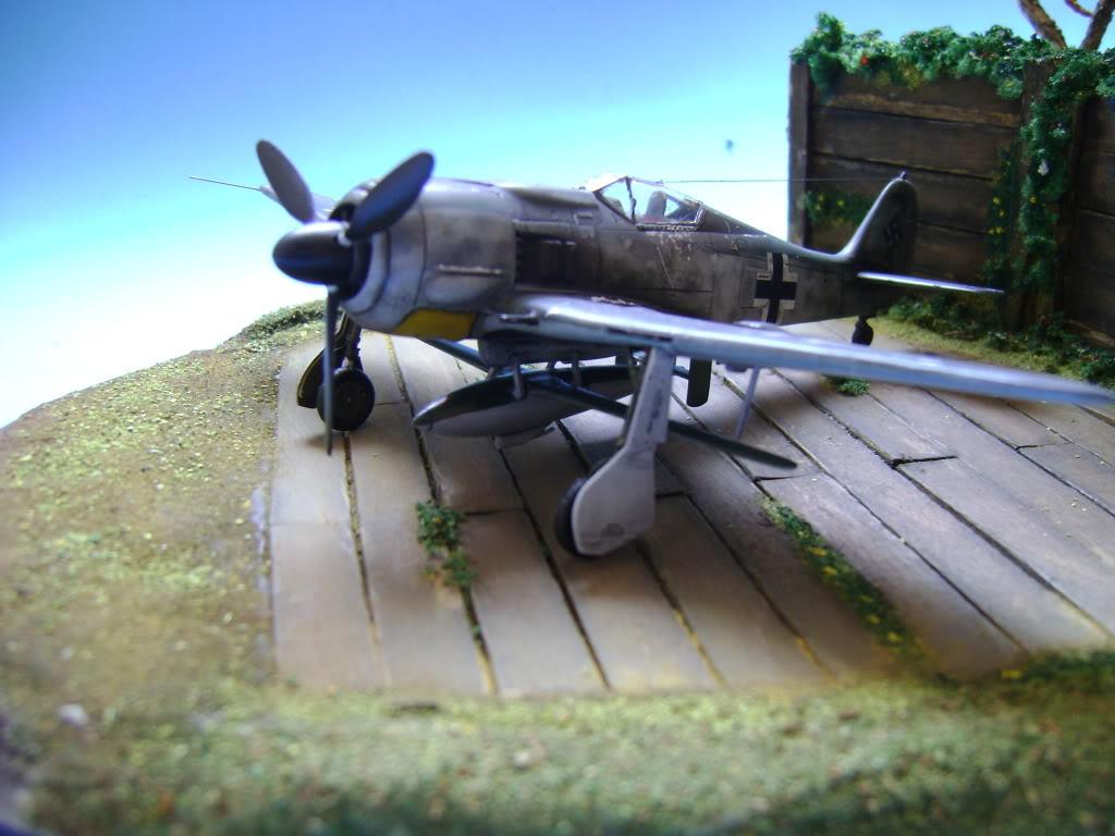 """FW-190 A8 & Bv 246 """"Hagelkorn"""" DSC03409"""