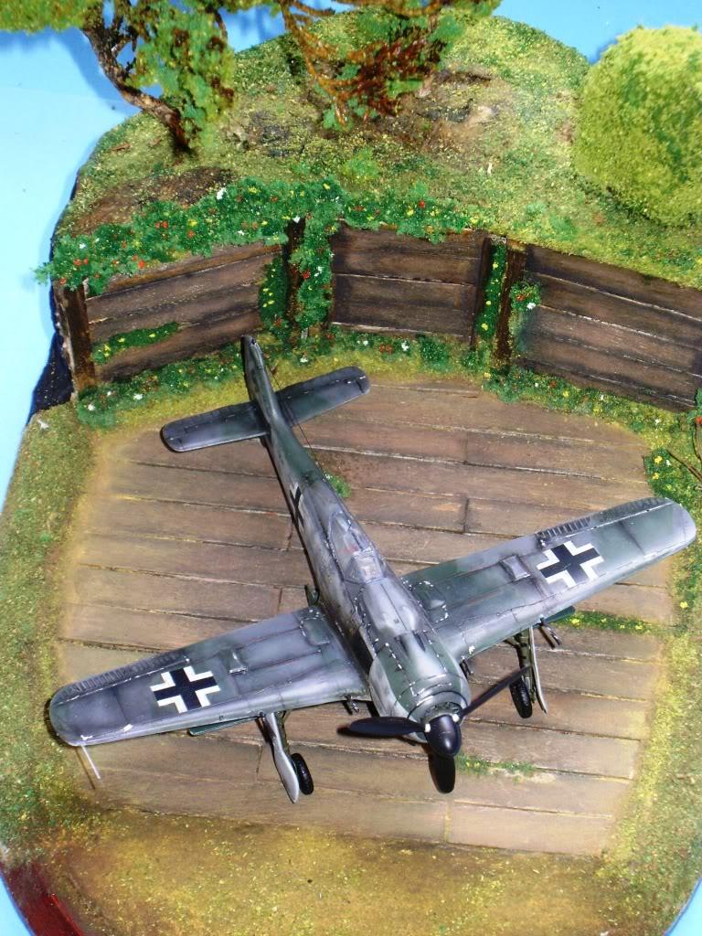"""FW-190 A8 & Bv 246 """"Hagelkorn"""" DSC03417"""