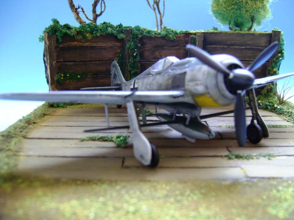 """FW-190 A8 & Bv 246 """"Hagelkorn"""" DSC03420"""