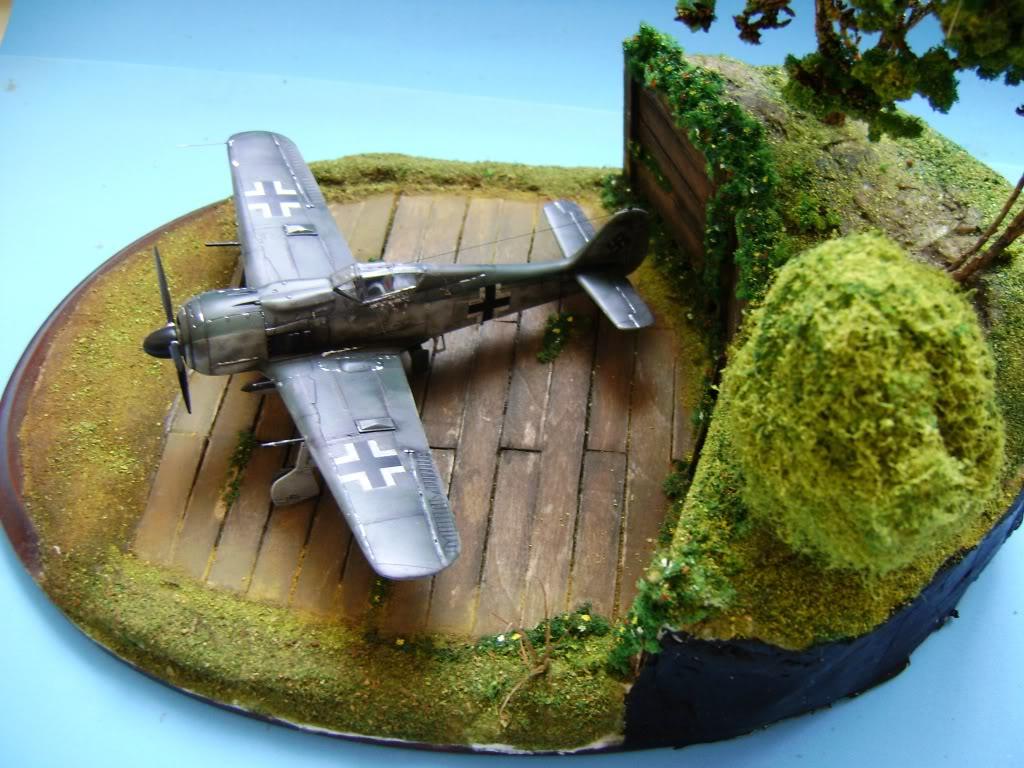 """FW-190 A8 & Bv 246 """"Hagelkorn"""" DSC03421"""