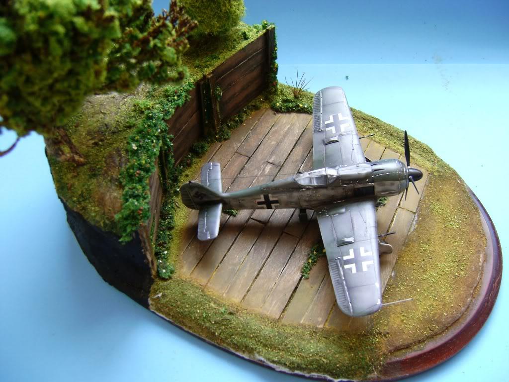 """FW-190 A8 & Bv 246 """"Hagelkorn"""" DSC03424"""