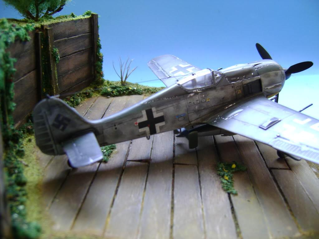 """FW-190 A8 & Bv 246 """"Hagelkorn"""" DSC03425"""