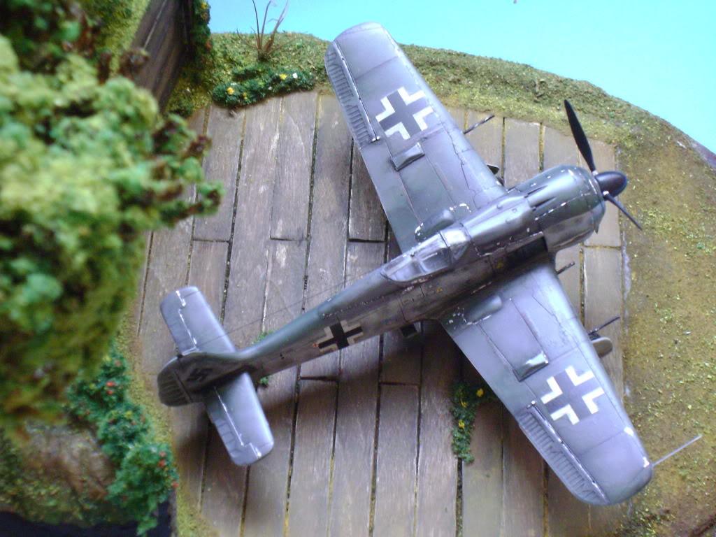 """FW-190 A8 & Bv 246 """"Hagelkorn"""" DSC03426"""