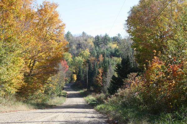 Pumpkin Road Pumproad_zps330bb26c
