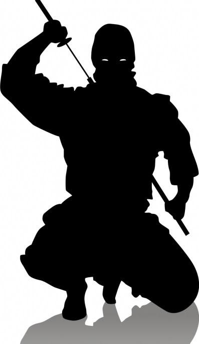 Kronos Denvar-Mabri SinGetsu's Biography Ninja_crouch-1