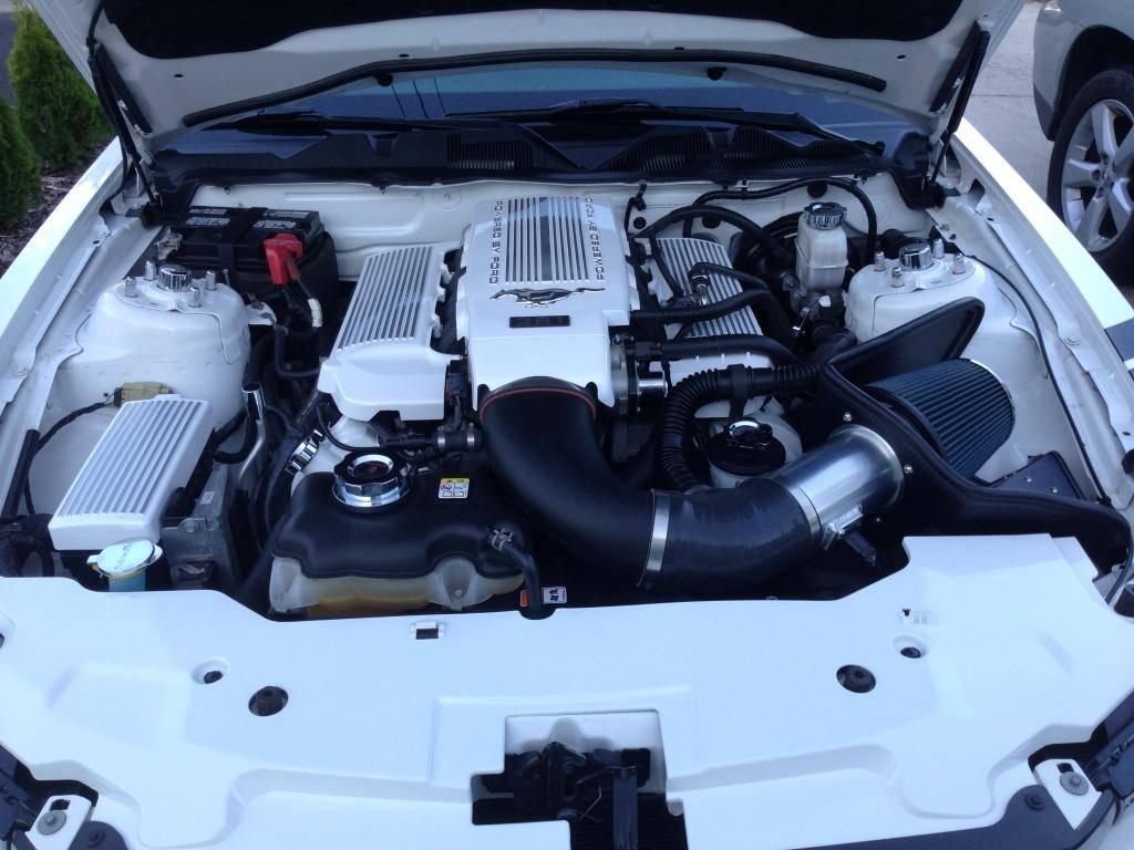 Engine Bay Dress up ! 2305CB69-959A-4959-826F-1A955FEE2E77_zpstgf7dnph