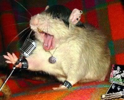Rock, Paper, Scissors Funny-rock-mouse