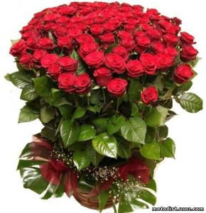 Поздравляем с Днем Рождения Наталью (Наталья G.) D40e33848320132c8806c84a9fe8d194