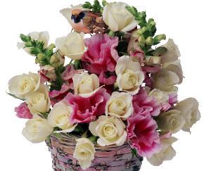 Поздравляем с Днем Рождения Елену (Leona59)  F60ea03e1791c9e56064ac7bcc754584