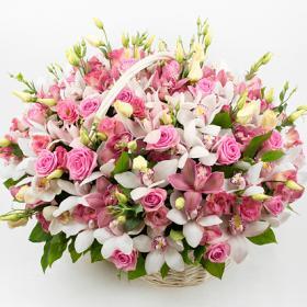 Поздравляем с Днем Рождения Светлану (mosia) 1aa748f251a499838a7dd02b74701ca8