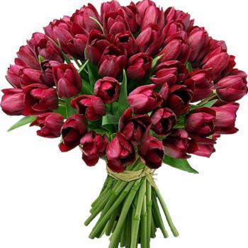Поздравляем с Днем Рождения Марину (Марина Солтанова) 1ce6cc251037e8c436a686c6868ca8cb