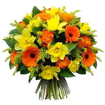 Поздравляем с Днем Рождения Алену (Алёна Ниценко) 6e0143672e2b4fdd80b211699405ff14