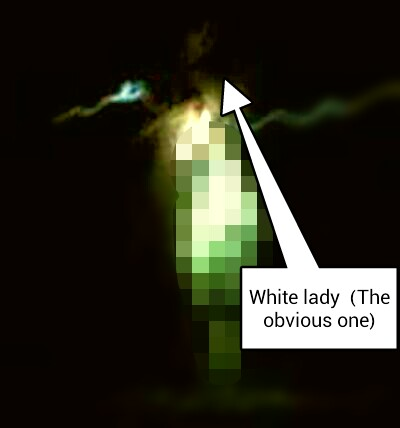 Possible full bodied apparition at the dower house. Whiteladyy_zps4e441099