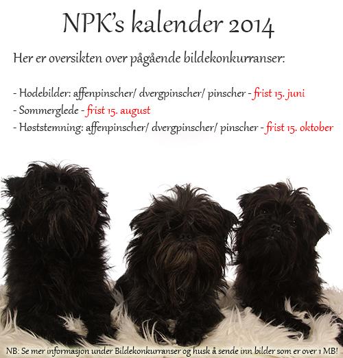 BILDEKONKURRANSE Kalender2014linn-1