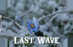 Last Wave of the Sea{Elite}{Todos los pjs libres!} 528405_mcopy
