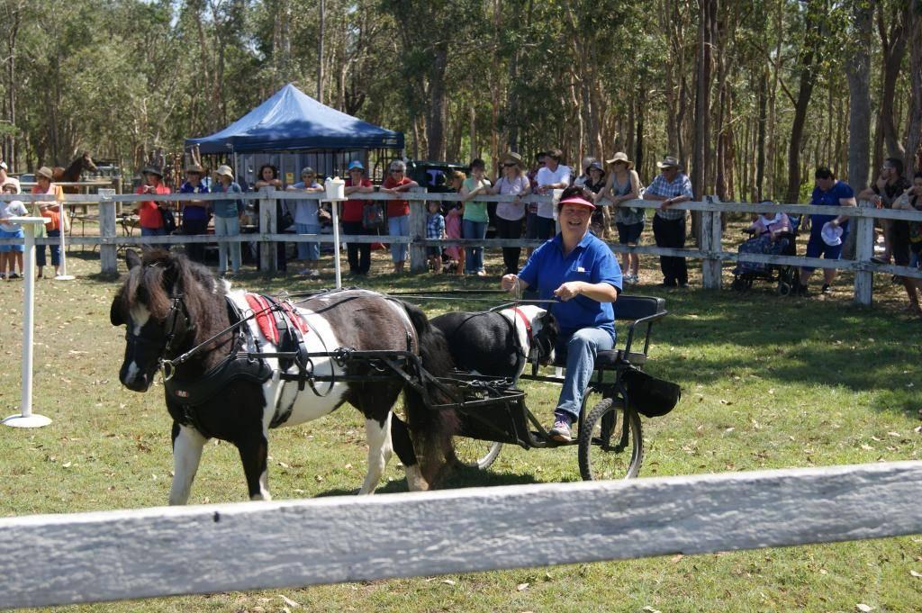 Riding For Disabled! 21st Sept 2013 DSC00923_zps3daeb9b3