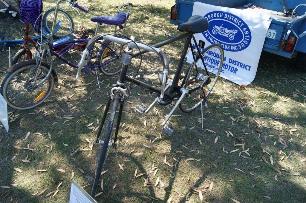 Riding For Disabled! 21st Sept 2013 DSC00943_zps35e3abb8