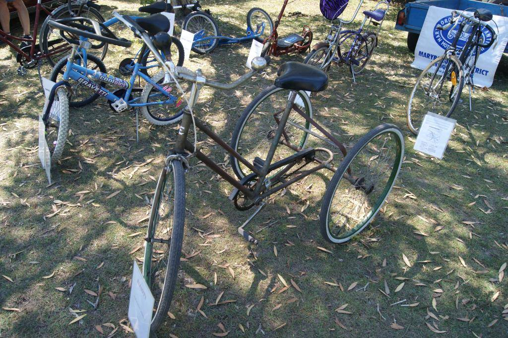 Riding For Disabled! 21st Sept 2013 DSC00945_zps128c671d