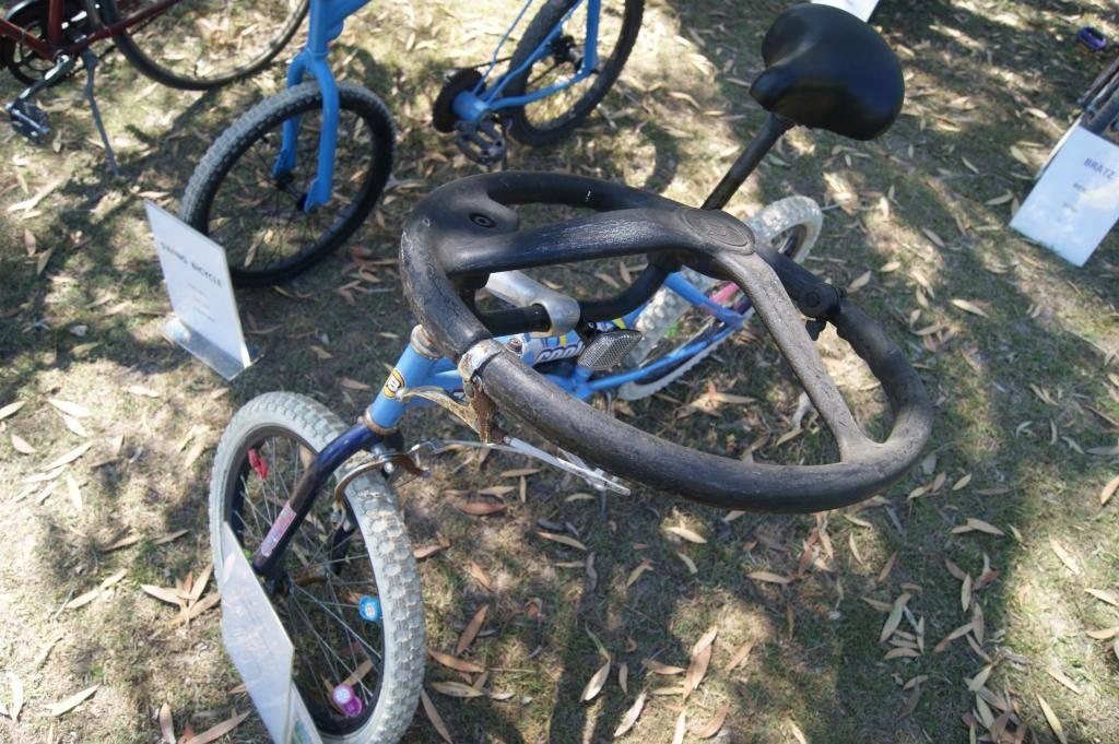 Riding For Disabled! 21st Sept 2013 DSC00946_zps4327a7de