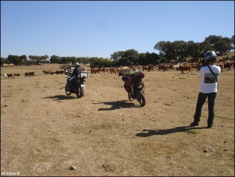 Travel Event 2009 - Crónica 09_09_04-06-TravelEvent-Avis-26