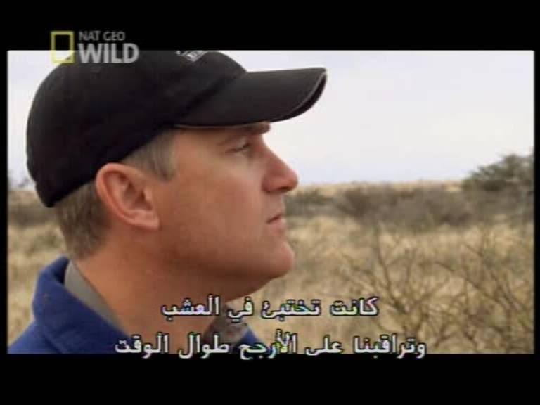 7 بالمجان سيرفر الصحراء Sahara Server CCcam - صفحة 2 NatGeoWild_353011804_H_27500_201005