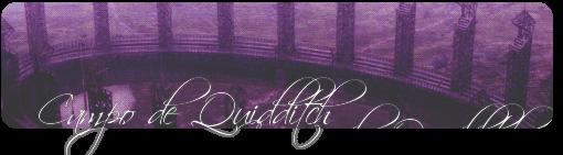 Campo de Quidditch
