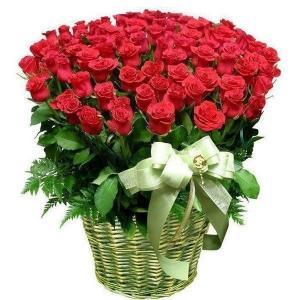 Поздравляем с Днем Рождения Милу (МилаяМила) 847a77c40d83cec95e37c92536270eff