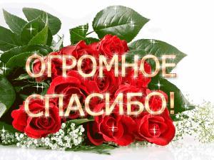 Поздравляем с Днем Рождения Галину (galina333) 66853c7ea21b9a6b0c3d108f806a8a93