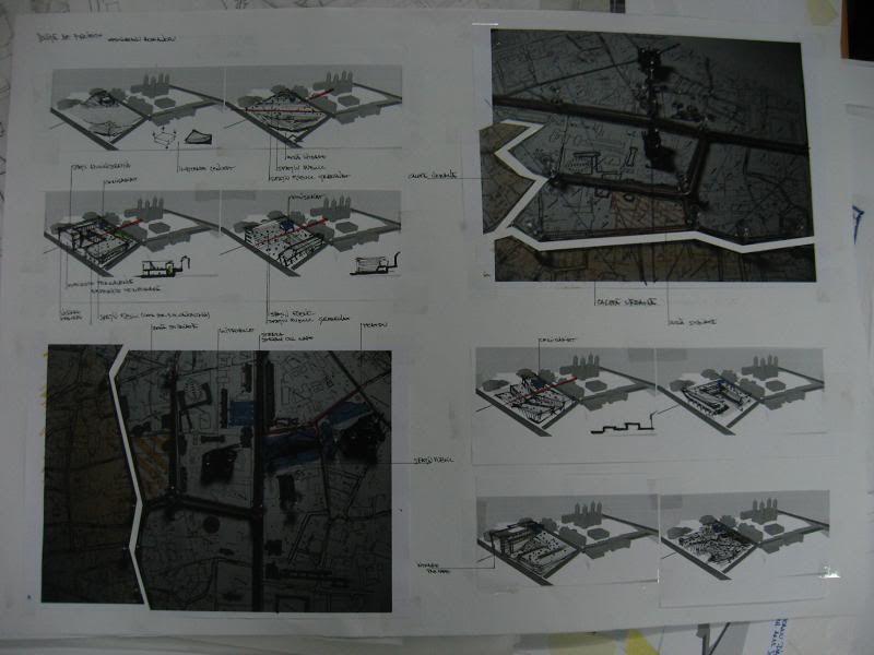 sescioreanu - proiecte scoala [an 3 4 5] IMG_5348