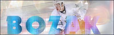Toronto Maple Leafs.  Bozak2-1