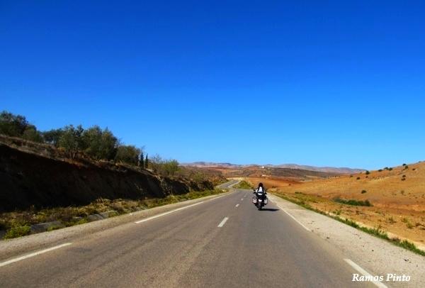 O Meu Zoom...de Marrocos, em 2014 - Página 2 01f089c1-4b3c-4a69-bff4-ee3c47f8ddfe_zps13d8903c